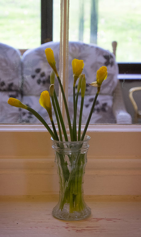 sydenham house care home blakeney rooms image flowers